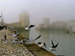 « D'ailleurs, parce que le vent, comme on dit, n'est pas à la poésie, ce n'est pas un motif pour que la poésie ne prenne pas son envol. Tout au contraire des vaisseaux, les oiseaux ne volent bien que contre le vent. Or la poésie tient de l'oiseau » -Victor Hugo…  Bienvenue dans le monde de SOlène !