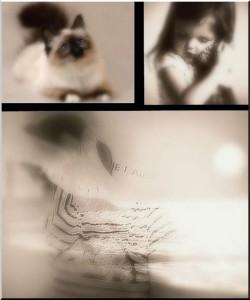 Le miracle de l'amour, c'est de resserrer le monde autour d'un être qui vous enchante –Pascal Bruckner, Les voleurs de beauté…