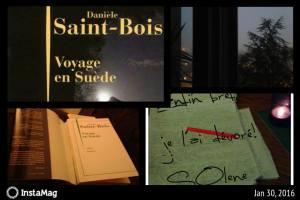 """Danièle Saint Bois a publié entre autres chez Julliard, """"Dies Irae """"(2005), Marguerite, Françoise et moi (2009), """"L'Âme des noirs"""" (2010), """" Villa Bianca"""" (2012) et """"Ma voisine a disparu"""" (2012)..."""