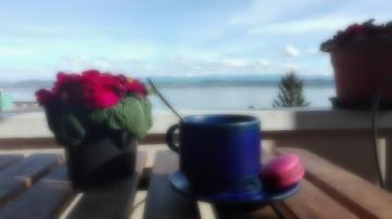 Vue sur le lac de Neuchâtel (Suisse)